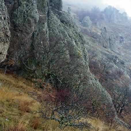 Фото 'Зимняя карадагская зарисовка' - Oleg Vanilar (© Юки-тян), добавлено: 11.03.2011 20:49