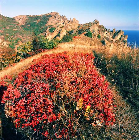 Фото 'Путь по красному холму' - Oleg Vanilar (© Юки-тян), добавлено: 12.03.2011 07:54
