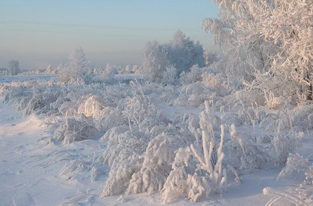���� ����� ���� (� Volkodavsha), ���������: 12.03.2011 12:25