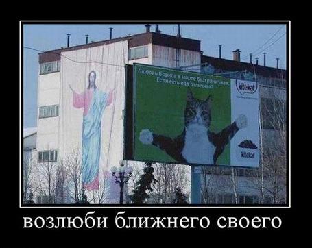 Фото Возлюби ближнего своего (© Штушка), добавлено: 12.03.2011 19:21