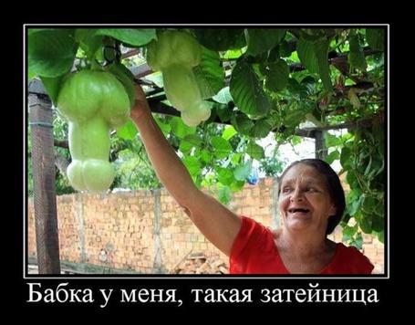 Фото Бабка у меня, такая затейница (© Штушка), добавлено: 12.03.2011 19:25