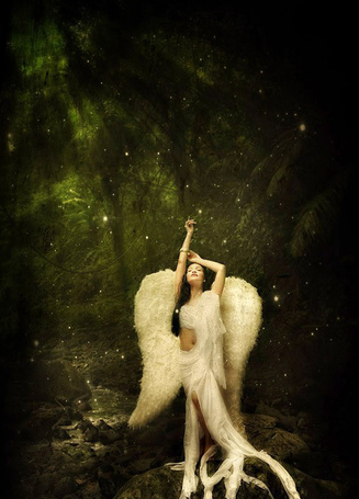 Фото Ангел в лесу (© TARAKLIA), добавлено: 17.03.2011 19:15