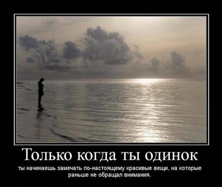 Фото Только когда ты одинок ты начинаешь замечать по-настоящему красивые вещи, на которые решил не обращать внимания