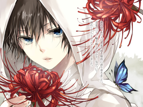 Фото Парень в белом капюшоне с голубой бабочкой на плече и красным цветком в руке