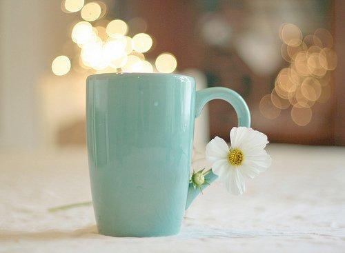 Фото Чашка с цветком жасмина