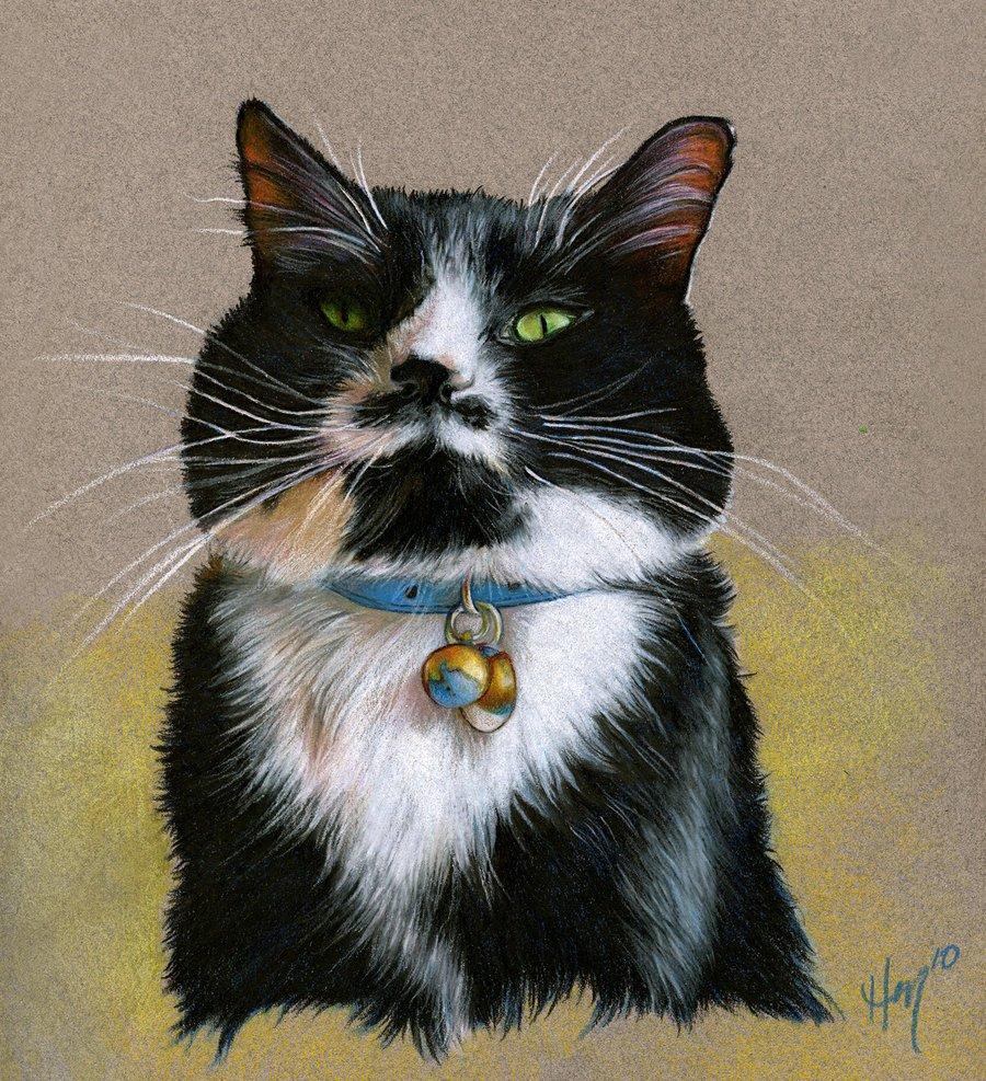 Открытки, картинки гордый кот