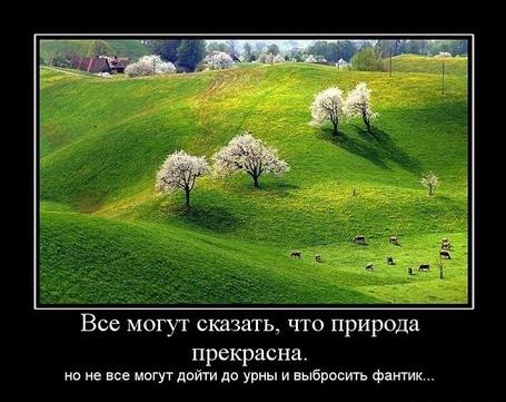 Фото Все могут сказать, что природа прекрасна. Но не все могут дойти до урны и выбросить фантик...