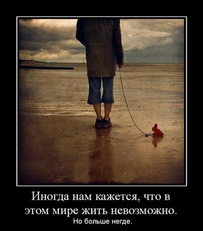 Фото Иногда кажется, что в этом мире жить невозможно, но больше негде (© Флориссия), добавлено: 05.04.2011 13:52
