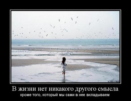 Фото В жизни нет никакого другого смысла, кроме того, который мы сами в неё вкладываем