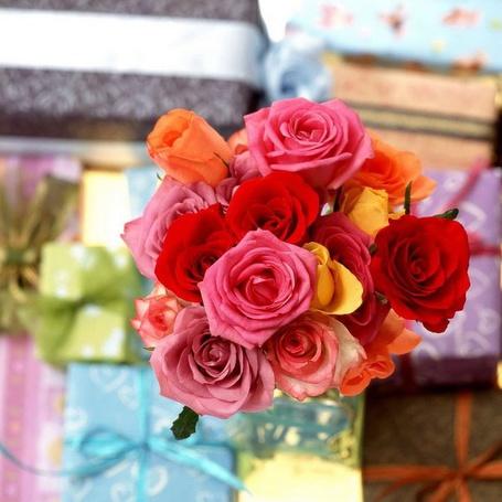 Фото Красивые розы (© Штушка), добавлено: 09.04.2011 20:39