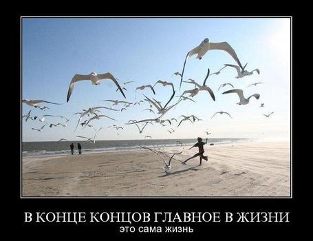 Фото В конце концов главное в жизни сама жизнь