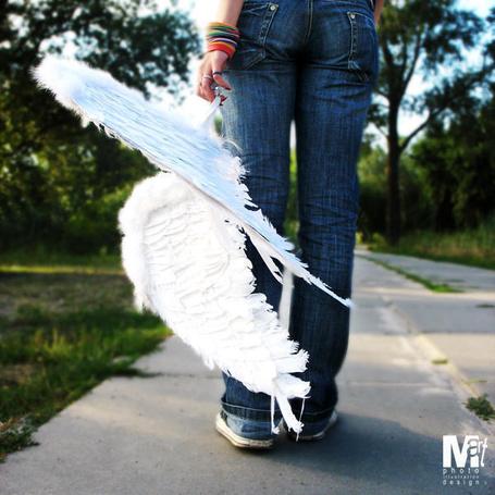 Фото Девушка с белыми крыльями (© Шепот_дождя), добавлено: 17.04.2011 02:39