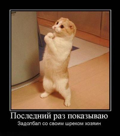 ���� ��� ���������� ���� � ������� �� ����� (��������� ��� ���������. �������� �� ����� ������ ������) (� D.Phantom), ���������: 19.04.2011 05:16