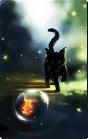 Фото Чёрный котёнок и золотая рыбка (© Флориссия), добавлено: 19.04.2011 19:09
