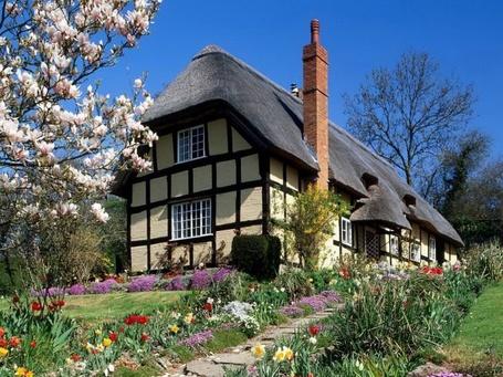 Фото Домик с красивыми лужайками (Англия) (© Штушка), добавлено: 21.04.2011 00:11