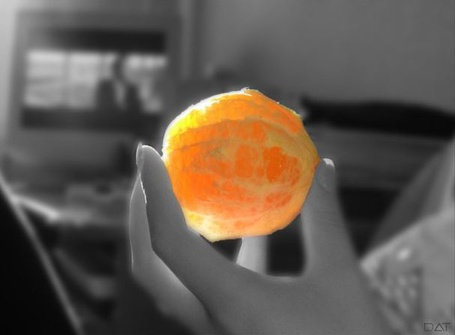 Фото Почищенный апельсин (© Штушка), добавлено: 22.04.2011 00:47