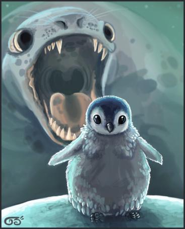Фото Морской котик раскрыл рот, чтобы съесть пингвинёнка (© Флориссия), добавлено: 24.04.2011 21:05