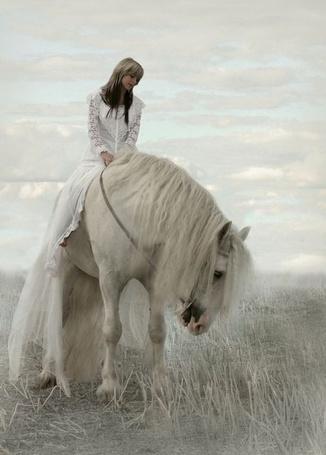 Фото Девушка на коне отдыхают после прогулки
