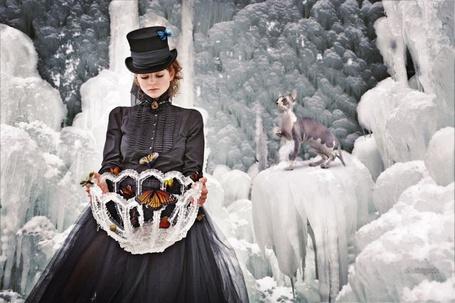 Фото Девушка с бабочками и лысой кошкой