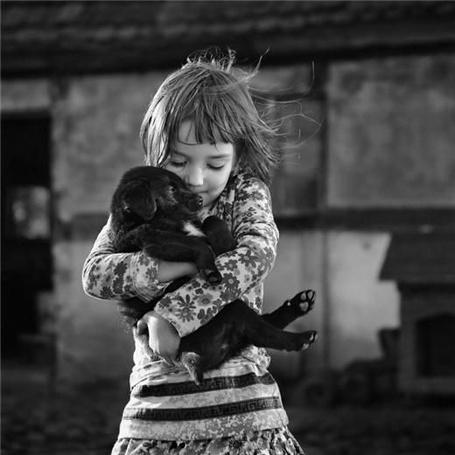 Фото Чёрный щенок на руках у девочки (© Штушка), добавлено: 29.04.2011 18:24