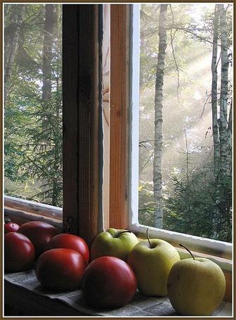 Фото Яблочки на окне (© Штушка), добавлено: 29.04.2011 18:27