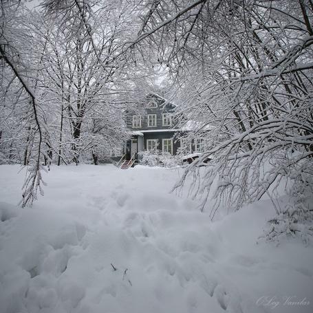 Фото 'В гости к Паустовскому' - Oleg Vanilar (© Юки-тян), добавлено: 02.05.2011 14:59