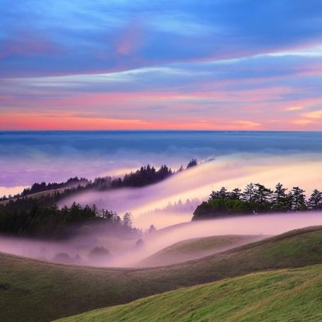 Фото Туман на лугах (© Штушка), добавлено: 06.05.2011 18:01