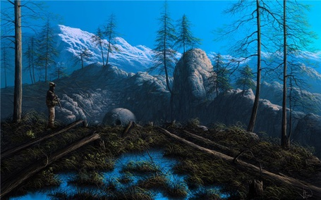 Фото Сосновый лес (© Флориссия), добавлено: 13.05.2011 15:32