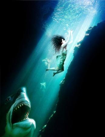 Фото Девушка спасается от акулы