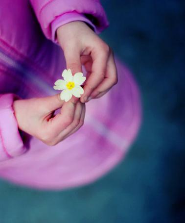 Фото Девочка с цветочком в руках (© D.Phantom), добавлено: 18.05.2011 00:28