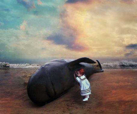 Фото Девочка пытается разбудить мёртвого кита