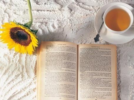 Фото Чашка чая,книга и подсолнух (© Штушка), добавлено: 22.05.2011 19:34