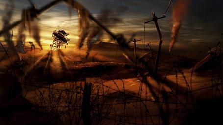 Фото На закате (© Флориссия), добавлено: 26.05.2011 21:48