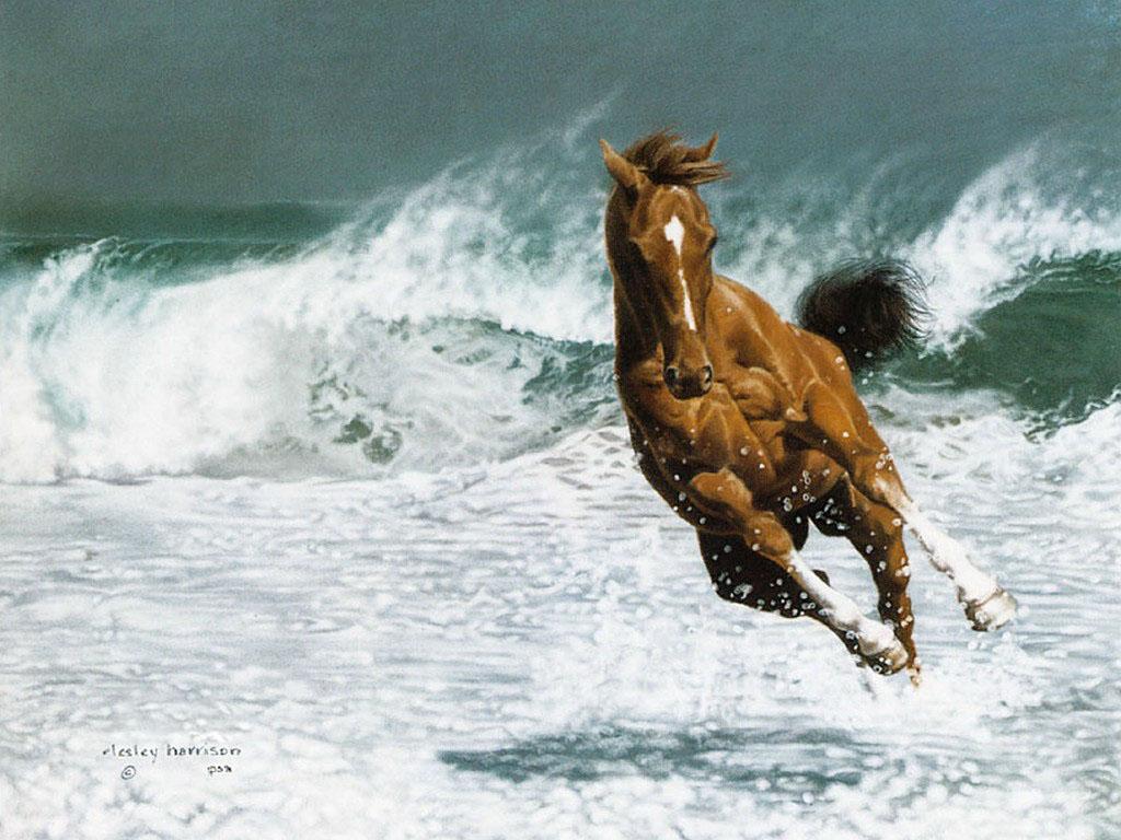 Фото рисунок коня бегущего по воде