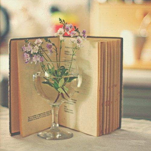 Фото Раскрытая книга и крохотные цветочки