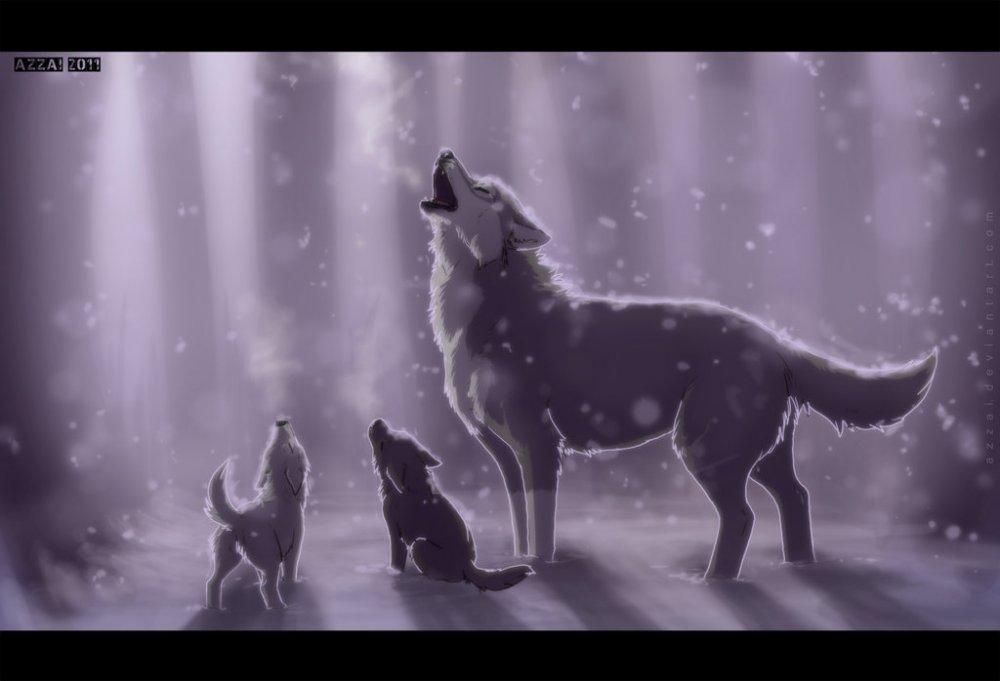 Фото Волк с волчатами в снегопад