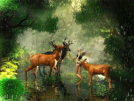 Фото Лесная нимфа в окружении оленей под дождём в сказочном лесу