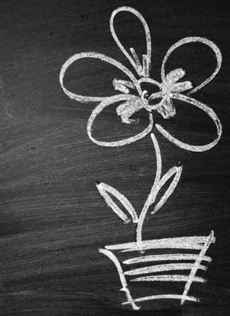 Фото Цветок в горшке нарисованный мелом