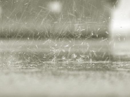 Фото Сильный дождь (© Штушка), добавлено: 14.06.2011 19:51