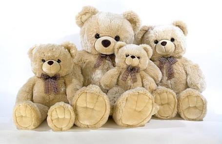 Фото Семья игрушечных медведей (© Юки-тян), добавлено: 17.06.2011 21:31
