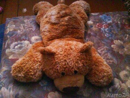Фото Плюшевый мишка отдыхает (© Юки-тян), добавлено: 17.06.2011 21:33