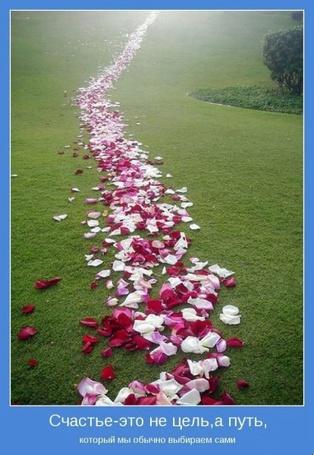 Фото Счастье - это не цель, а путь, который мы обычно выбираем сами (© Флориссия), добавлено: 26.06.2011 21:00
