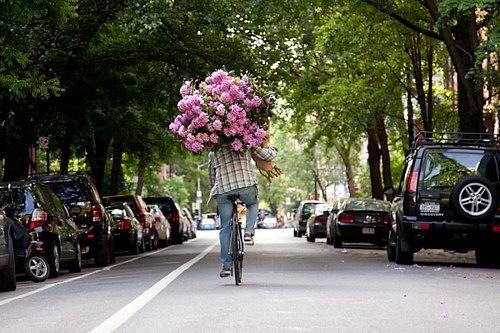 ... велосипеде с огромным букетом цветов: photo.99px.ru/photos/22981
