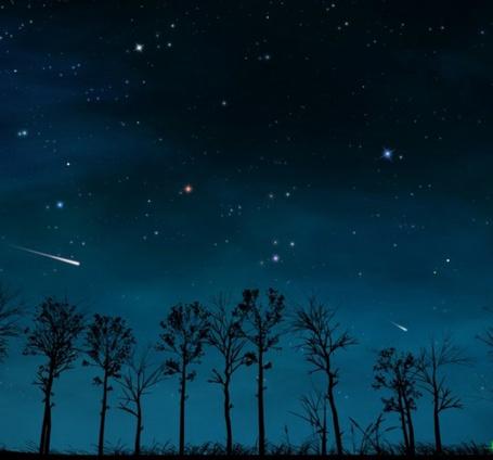 Фото Силуэты деревьев на фоне ночного неба (© Флориссия), добавлено: 03.07.2011 20:26
