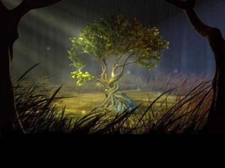Фото Волшебное дерево (© Флориссия), добавлено: 04.07.2011 19:45