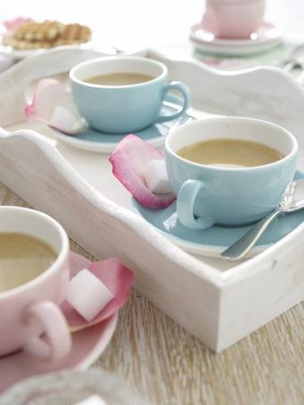 Фото Кофе в цветных чашках (© Штушка), добавлено: 16.07.2011 15:30