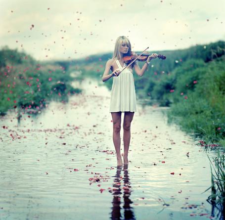 Фото Девушка в коротком платье стоит в ручье и играет на скрипке, а с неба падают лепестки роз, фотограф Евгений Корчак / Evgeniy Korchak (© Alexsey11), добавлено: 16.07.2011 22:06