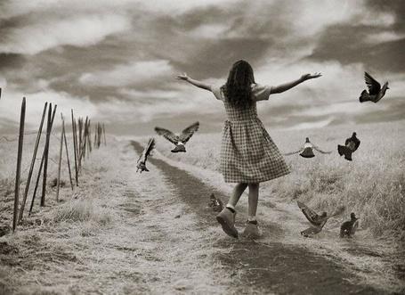Фото Девочка и голуби (© Шепот_дождя), добавлено: 23.07.2011 12:27