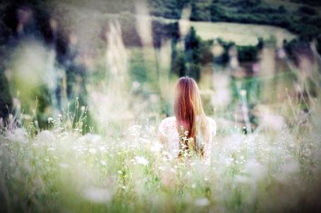 Фото Девушка на поляне (© Флориссия), добавлено: 24.07.2011 16:01