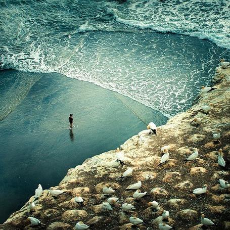 Фото Силуэт у кромки воды, фотограф Cuba Gallery (© Шепот_дождя), добавлено: 25.07.2011 01:43